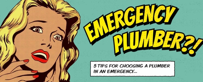 5-tips-for-choosing-a-plumber-in-an-emergency-opt